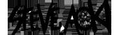 Steve Aoki Logo